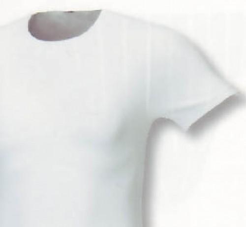 CECEBA Classic american T-Shirts im DPP